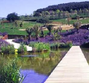 Viajar a barcelona distrito de sants montju c de barcelona for Jardin botanico montjuic