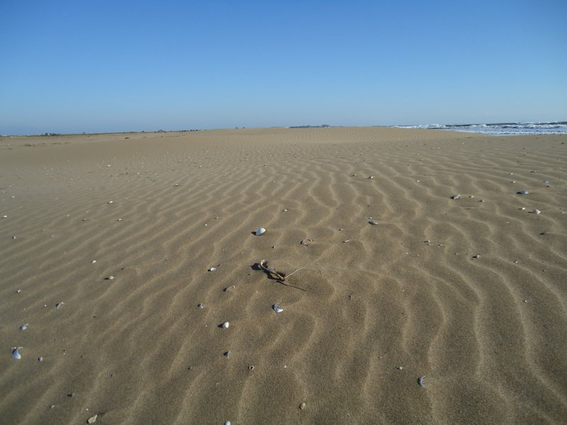 Playa del Ttrabucador