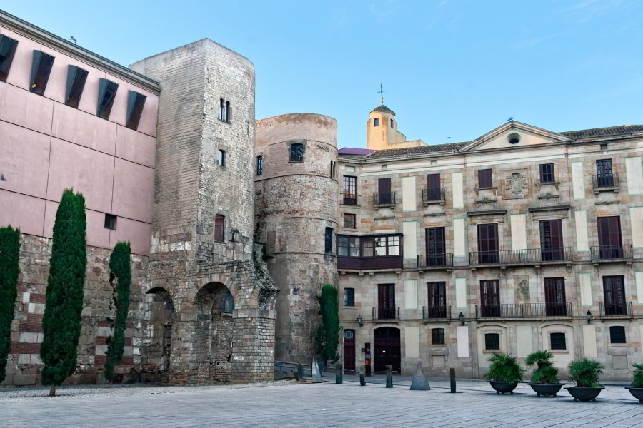 Tour Picasso por Barcelona con entrada al Museo Picasso