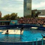 Barcelona Zoo: Tickets